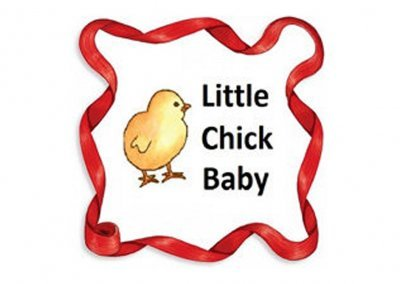 Little Chick Baby